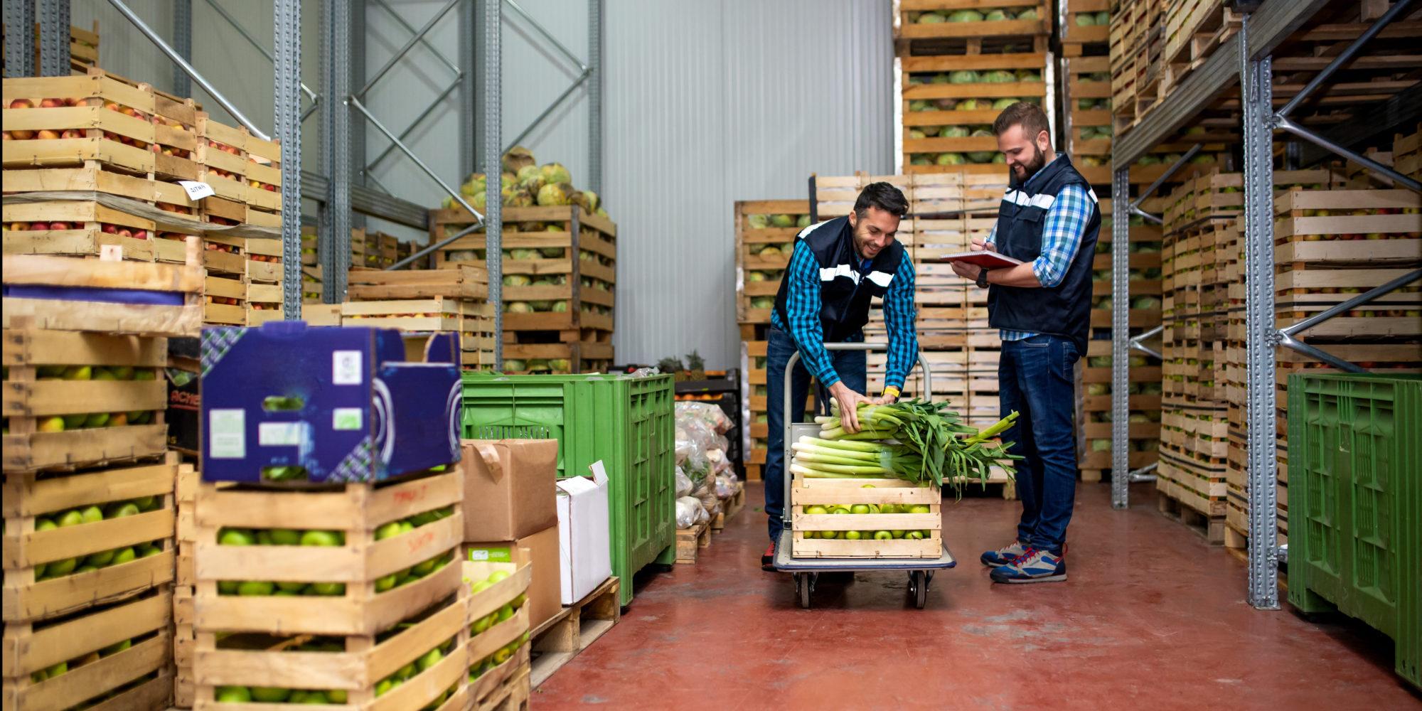 Obst & Gemüse Titelbild